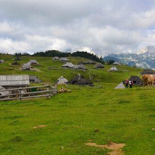 Pohodový výšlap na Velikou planinu v Kamnicko-Savinjských Alpách