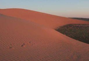 Expedice Mongolia míří za poznáním!