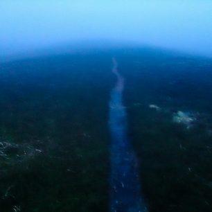 Napříč vřesovišti cesta vedla jen výjimečně. Tam, kde cesta nebyla, jsem se neustále propadal do ledové vody.